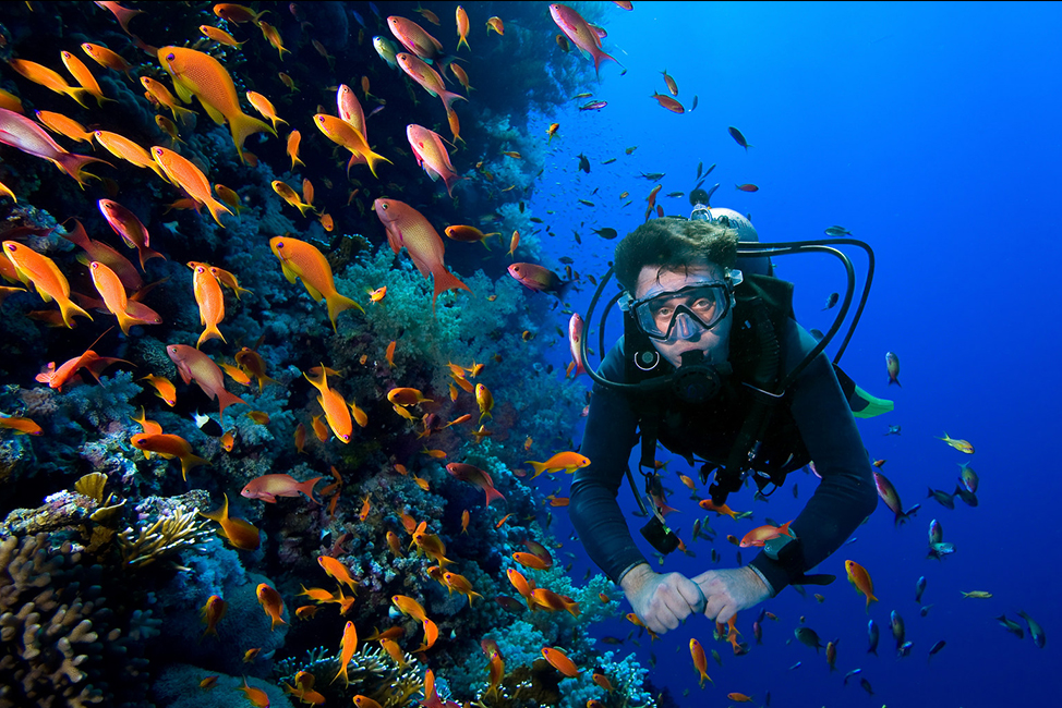 Image description: Scubadiving in Bali